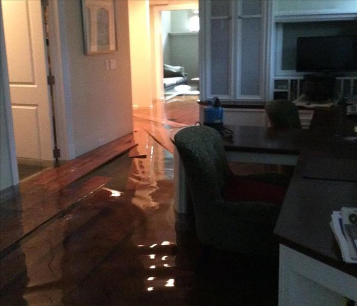 Flooded Basement in Lincoln Park  Before