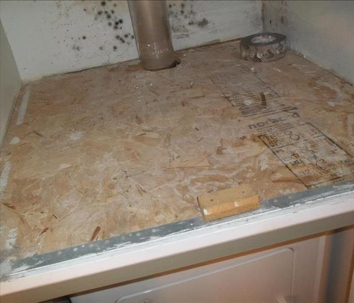 Moldy Laundry Area in West Town, Chicago, IL Before